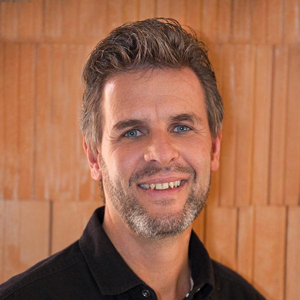Ing. Helmut Strigl